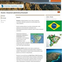 Brasilia - Amazonian sademetsät ja Amazonjoki