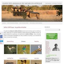 Safari d'Afrique Guide des animaux Safari en Afrique