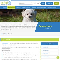 Top-notch grooming and spa service for pets from Safarivet