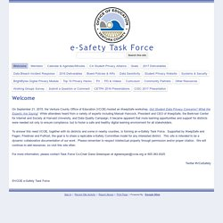 e-Safety Task Force