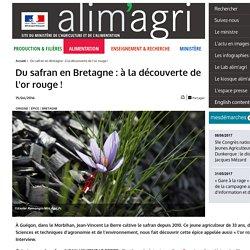 MAA 15/06/16 Du safran en Bretagne : à la découverte de l'or rouge !