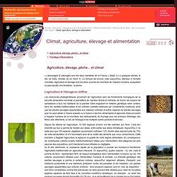 Climat, agriculture, élevage et alimentation