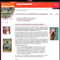 CNRS/sagascience - Les vaccins et la variabilité des pathogènes