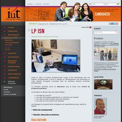 IUT SAINT-DIE - Lp isn - Départements - Département info