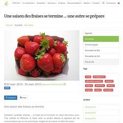Centre wallon de Recherches agronomiques - AUTOMNE 2010 - Une saison des fraises se termine … une autre se prépare
