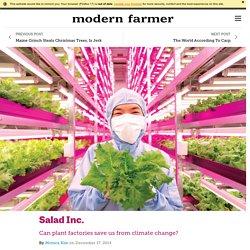 Salad Inc.
