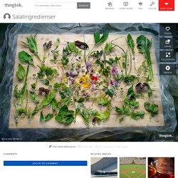 Salatingredienser