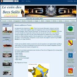 ***********Le coin des Becs Salés**********: Bassins saliféres en France