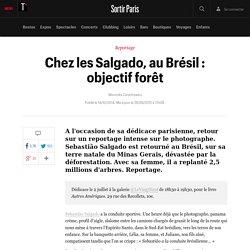 Chez les Salgado, au Brésil : objectif forêt - Sortir