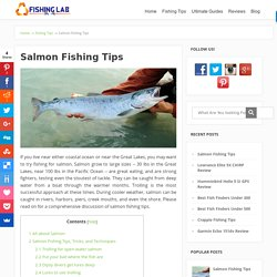 Salmon Fishing Tips – How to catch Salmon, Things to Bring When Salmon Fishing