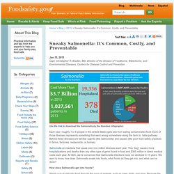 FOODSAFETY_GOV 15/01/15 Sneaky Salmonella: It's Common, Costly, and Preventable (infographie présentant les principaux indicateurs aux USA)