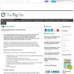 PIGSITE 25/11/16 Salmonella Reduction in Pork Production