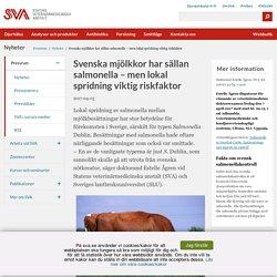 SVA_SE 03/04/17 Svenska mjölkkor har sällan salmonella – men lokal spridning viktig riskfaktor