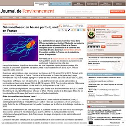 JDLE 04/02/15 Salmonelloses: en baisse partout, sauf en France