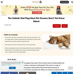 Holistic Red Flag (Salt Toxicity)