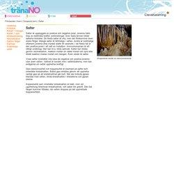 Salter - Oorganisk kemi - Kemi - Träna NO
