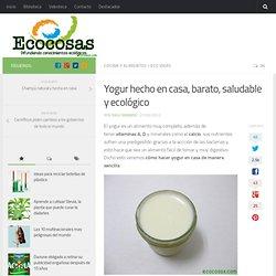 Yogur hecho en casa, barato, saludable y ecológico