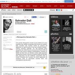 Salvador Dali (Centre Pompidou - 21 Novembre 2012 - 25 Mars 2013