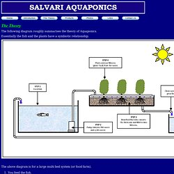 Salvari - Introduction