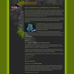 Salvia.net - Salvia divinorum use, experiences and other info.