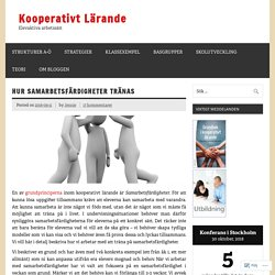 Hur samarbetsfärdigheter tränas – Kooperativt Lärande
