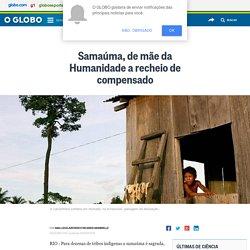 Samaúma, de mãe da Humanidade a recheio de compensado - Jornal O Globo