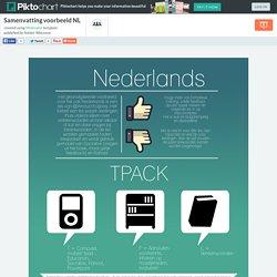 Samenvatting voorbeeld NL