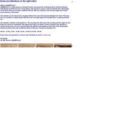 Art & Webdesign