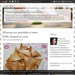 Samoussas aux épices,herbes et viande hachée...Escapade en cuisine - UneLiyaasDeBonnesChoses
