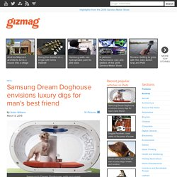 Samsung Dream Doghouse envisions luxury digs for man's best friend - Images