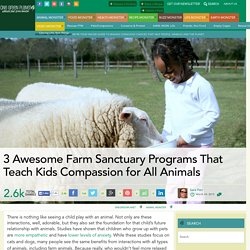 3 Awesome Farm Sanctuary Programs That Teach Kids Compassion for All Animals