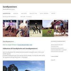 Sandbywestern westernridskolan