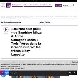 « Journal d'un poilu » de Sandrine Mirza & Annie Collognat-Barès « Trois frères dans la Grande Guerre: les frères Blazy-Lauzette