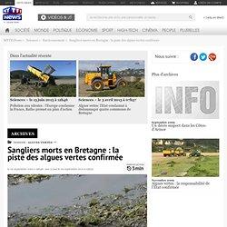 LCI 02/09/11 Sangliers morts en Bretagne : la piste des algues vertes confirmée