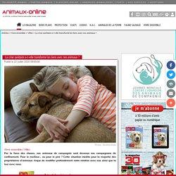 ANIMAUX ONLINE 22/07/20 La crise sanitaire a-t-elle transformé les liens avec nos animaux ?