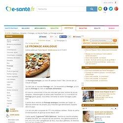 BLOG de PAULE NEYRAT 21/11/11 Le fromage analogue