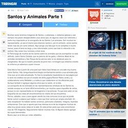 Santos y Animales Parte 1 - Taringa!