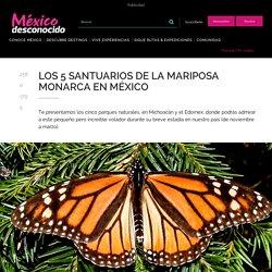 Los 5 santuarios de la Mariposa Monarca en México