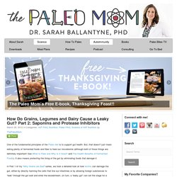How Do Grains, Legumes and Dairy Cause a Leaky Gut? Part 2: Saponins and Protease Inhibitors - The Paleo Mom