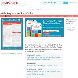 Wide Sargasso Sea Study Guide by LitCharts