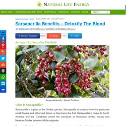 Sarsaparilla Benefits - Detoxify Your Blood