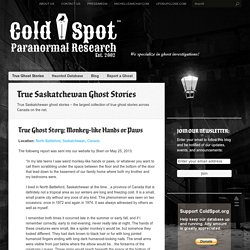 Cold Spot Paranormal Research: Ghosts Haunted