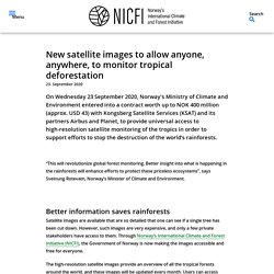New satellite images to allow anyone, anywhere, to monitor tropical deforestation – NICFI