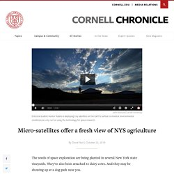 CORNELL_EDU 23/10/19 Micro-satellites offer a fresh view of NYS agriculture