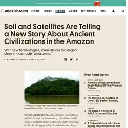 Soil and Satellites Are Telling a New Story About Ancient Civilizations in the Amazon