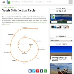Needs Satisfaction Cycle - Evolution Counseling