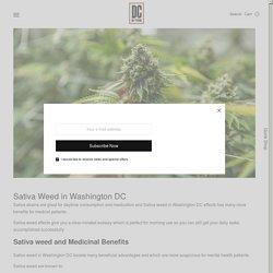 Sativa Weed in Washington DC