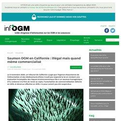 INFOGM 13/11/20 Saumon OGM en Californie : illégal mais quand même commercialisé