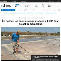 FRANCE 3 10/07/18 Île de Ré : les sauniers inquiets face à l'IGP fleur de sel de Camargue