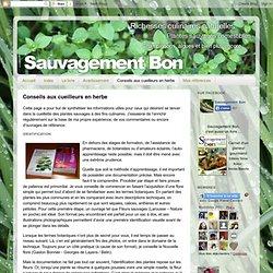 Sauvagement-Bon: Conseils aux cueilleurs en herbe